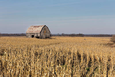 Photograph - Barn In The Corn by Josef Pittner