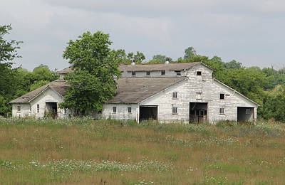 Photograph - Barn In The Field 948 by Ericamaxine Price