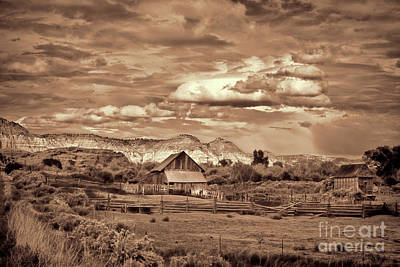 Photograph - Barn In The Mountains Monotone by David Arment