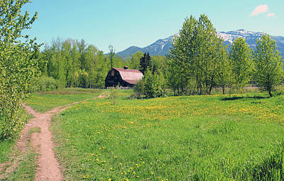 Photograph - Barn In The Spring Time by David Pantuso