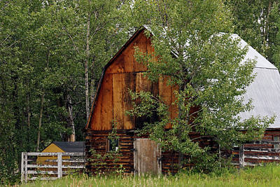Photograph - Barn In The Trees by Inge Riis McDonald