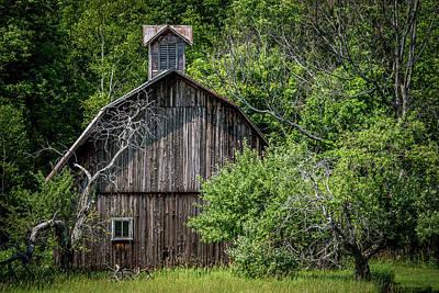 Farm Scenes Photograph - Barn In The Woods by Paul Freidlund