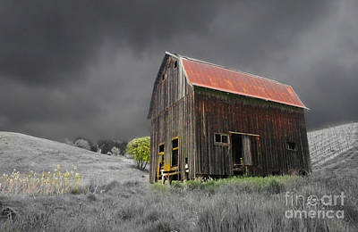 Photograph - Barn Life by TK Goforth