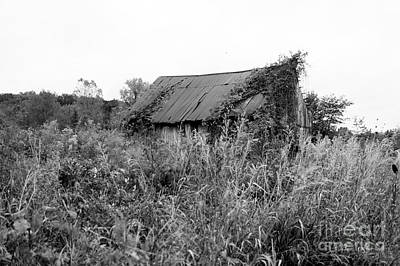 Photograph - Barn by Monica Whaley