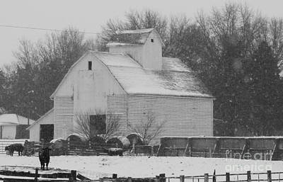 Photograph - Barn Of Beauty by J L Zarek