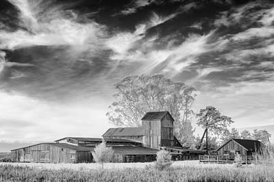 Photograph - Barn On Marsh In Infrared by Greg Nyquist
