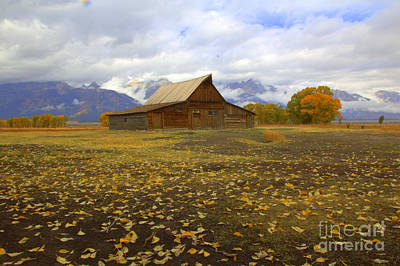 Photograph - Barn On Mormon Row Utah by Cynthia Mask