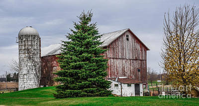 Photograph - Barn On Spicerville Hwy by Grace Grogan