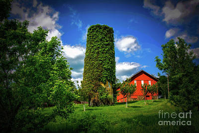 Photograph - Barn On The Hill by Rick Bragan