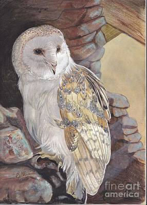 Painting - Barn Owl by Callie Smith