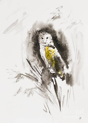 Painting - Barn Owl Gaze by Zaira Dzhaubaeva