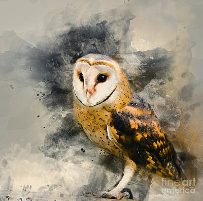 Mixed Media - Barn Owl by Ian Mitchell