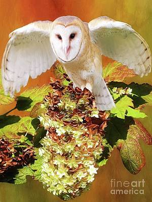 Digital Art - Barn Owl In Crape Myrtle by Suzanne Handel