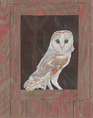 Painting - Barn Owl In Residence by Arlene Crafton