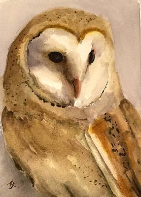 Painting - Barn Owl by June Rollins