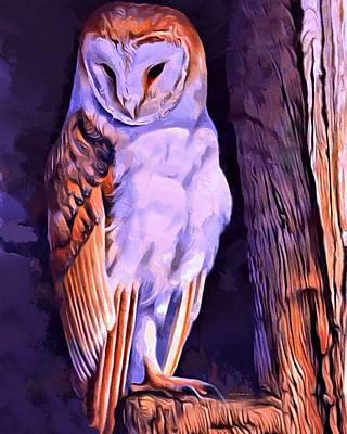 Barnyard Digital Art - Barn Owl Portrait  by Scott Wallace