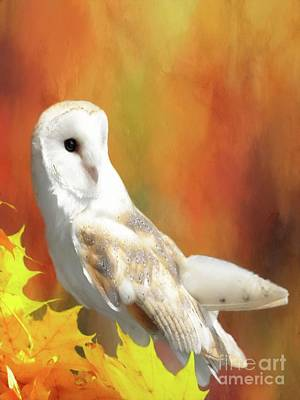 Digital Art - Barn Owl by Suzanne Handel