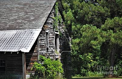 Photograph - Barn by Paulette Thomas