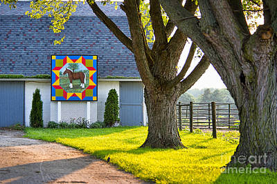 Photograph - Barn Quilt Near Lagrange by David Arment