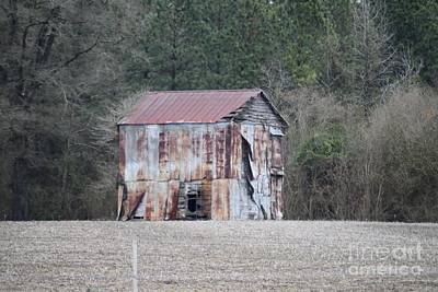 Photograph - Barn by Renee Olson