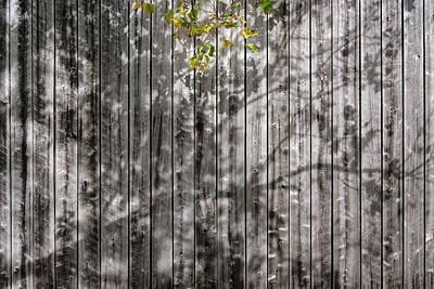 Photograph - Barn Shadows by Glenn DiPaola