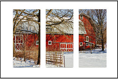 Barn Triptych Art Print by Pat Cook
