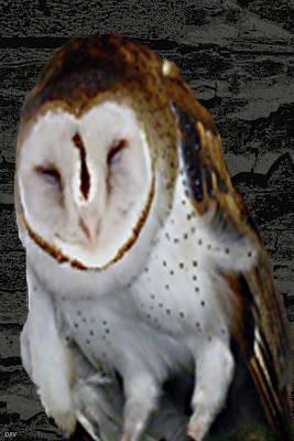 The Trees Mixed Media - Barn With Owl by Debra     Vatalaro