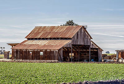 Photograph - Barn With Privacy by Gene Parks