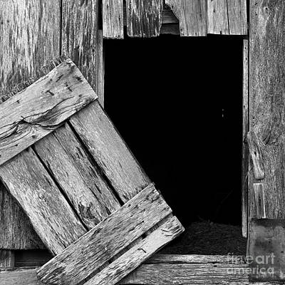 Photograph - Barn Wood by Patrick M Lynch