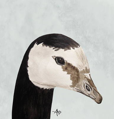 Barnacle Goose Portrait Art Print by Angeles M Pomata