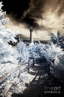 Photograph - Barnie Infrared Colors by John Rizzuto