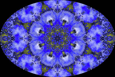Digital Art - Barnie Paw Prints Kaleidescope 11 by Dorothy Berry-Lound