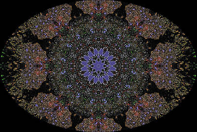 Digital Art - Barnie Paw Prints Kaleidescope 5 by Dorothy Berry-Lound