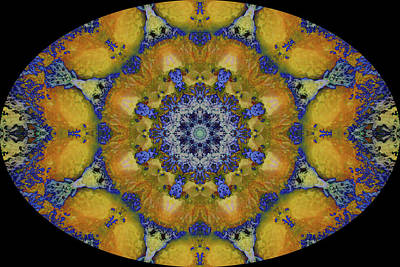Digital Art - Barnie Paw Prints Kaleidescope 8 by Dorothy Berry-Lound