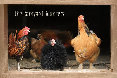 Chicken Mixed Media - Barnyard Bouncers by Lori Deiter