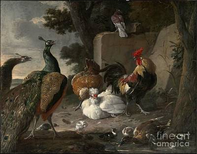 1636 Painting - Barnyard Fowl And Peacocks by MotionAge Designs