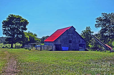 Photograph - Barnyard Scene by Debbie Portwood