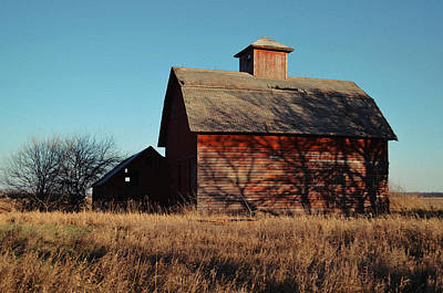 Photograph - Barnyard by Tom Druin