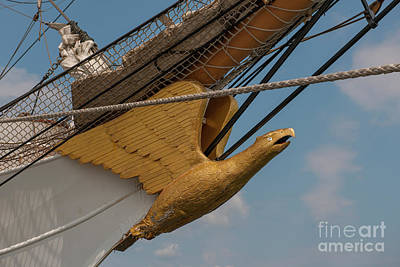 Photograph - Barque Eagle Masthead by Dale Powell
