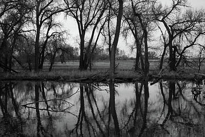Photograph - Barr Lake Refuge Reflections by Cascade Colors