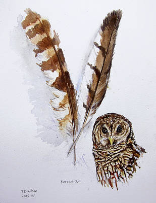 Painting - Barred Owl Feathers by TD Wilson