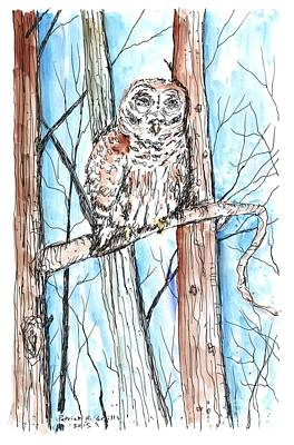 Painting - Barred Owl by Patrick Grills