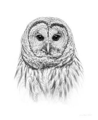 Photograph - Barred Owl Portrait Black And White by Jennie Marie Schell