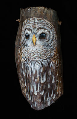 Painting - Barred Owl Sculptural Palm Frond by Nancy Lauby