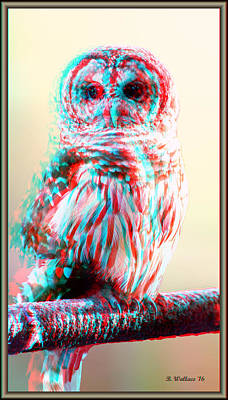 Barred Owl - Use Red-cyan 3d Glasses Art Print by Brian Wallace