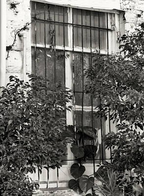 Photograph - Barred Window by Rosalie Scanlon