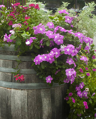 Barrel Of Flowers Art Print