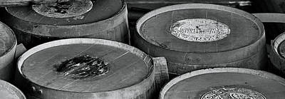 Photograph - Barrels Of Beauty by Nadalyn Larsen