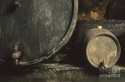 Wine Cellar Photograph - Barrels Of Wine In A Wine Cellar. France by Bernard Jaubert