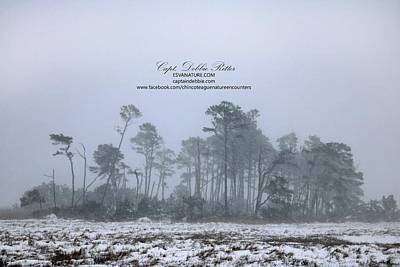Photograph - Barrier Island Under Snow by Captain Debbie Ritter